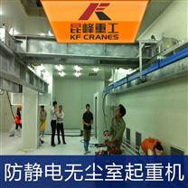上海食品级无尘葫芦起重机系统