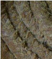 专业生产牛油棉纱盘根、牛油盘根高润滑性