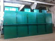 蒜肠加工厂污水处理设备