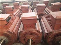 供应YVP系列三项异步变频电机马达