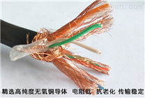 ZRNDJYPVP鎧裝地下鋪設計算機通訊電纜