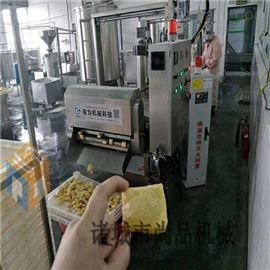 YZJ-3000炸兰花干油炸机 自动化豆腐串油炸设备