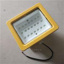 防爆LED泛光灯/马路灯/免维护防爆灯