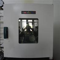 DGX-9243B-1電熱鼓風干燥箱