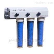 中亞 STG 氣體淨化器