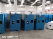 100g利辛县农村饮水次氯酸钠发生器消毒设备厂家