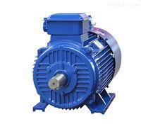 YE2-200L-4(30KW)變頻專用臥式電機