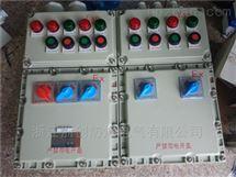 BXM53-12/16K32防爆配电箱