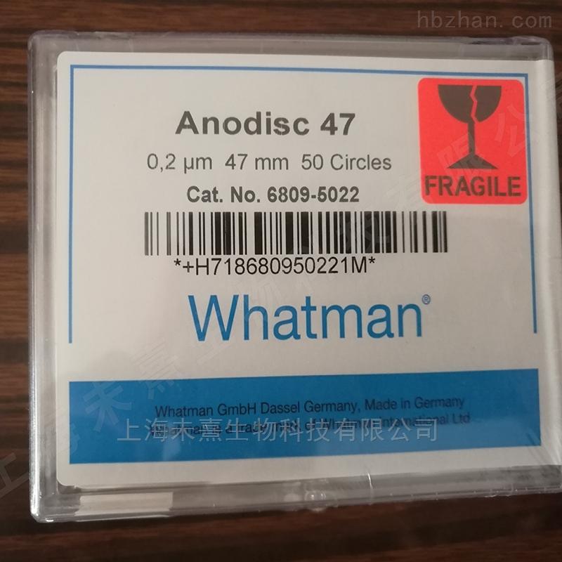 GEwhatman孔径200纳米AAO膜氧化铝膜
