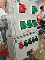 BXM51-6/K60防爆照明配电箱
