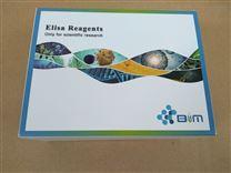 BIM大鼠己糖激酶(HK)ELISA试剂盒
