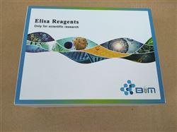 小鼠肌球蛋白(Myosin)ELISA試劑盒