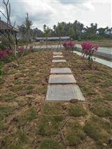 三亚生活小区污水处理设备
