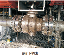 Quintex IR2M...VAEx 316L温控器-大连力迪