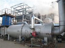 廠家直銷廢氣專用焚燒爐 價格優惠 堅固耐用