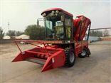 SL1.8米自走式青饲料收获机 青储收割机厂家