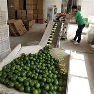 KL-350X花袋柠檬包装机