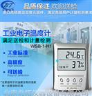 WSB-1-H1高精度数显温湿度表