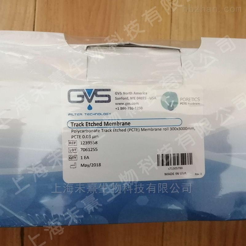 GVS蚀刻膜PCTE膜聚碳酸酯膜