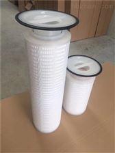 齊全衢州電廠水處理頗爾濾芯8904系列