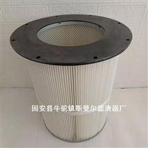 法兰螺孔除尘滤筒工业聚酯纤维粉尘滤芯