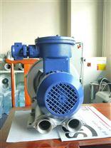 BT4气体防爆旋涡气泵