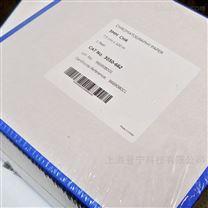 GE whatman  3MM纤维素 层析纸杂交纸 滤纸
