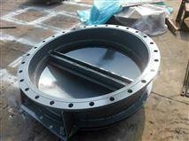 DN1000浮箱式拍门厂家