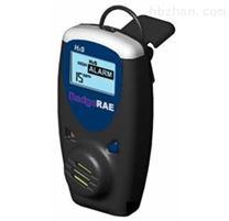 便攜式H 2 S(CO) 氣體檢測儀