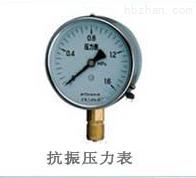 Y-100B/MN隔膜压力表