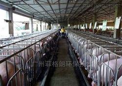 FGL-WH50L宜阳大型猪场高压喷雾除臭消毒设备厂家