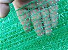 綠化環保用蓋土網批發價
