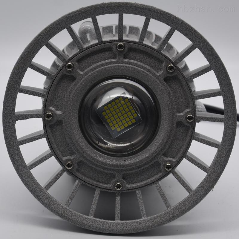 RL110A大功率免维护集成式LED防爆灯吊杆灯