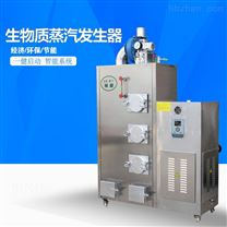 高效小型天然气蒸汽发生器广东