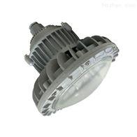HRD210免维护防爆节能灯