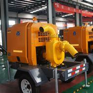 防洪防汛排水泵