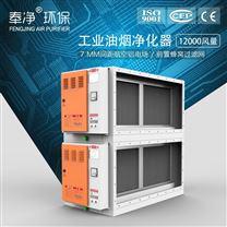 工業油煙淨化器 熱處理油霧淨化低空排放