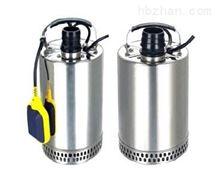 QDN小型不銹鋼潛水泵