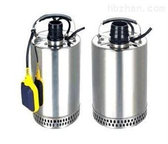 QDN小型不锈钢潜水泵