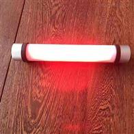 YJ1055防爆棒管灯集装箱磁吸电筒