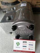 CASAPPA凯斯帕齿轮马达PLM20.20R5