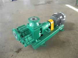 80FZB-30LLFZB系列氟塑料自吸泵