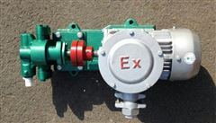 WCB50P整体不锈钢齿轮泵