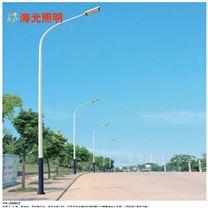 定制非标市政工程6-12米自弯臂LED市电路灯