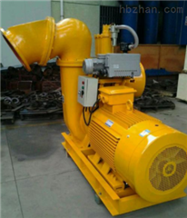 400ZSL2000-28-250-6双吸自吸泵