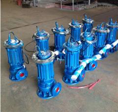 QW200-400-10-22无堵塞排污泵