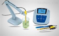 实验室离子分析仪