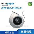 變頻器/風電專用 G2E180-EH03-01 ebm風機