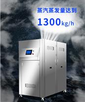 浙江凯大节能洗涤厂燃气锅炉低氮节能改造