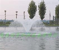 河流水處置噴泉曝氣機